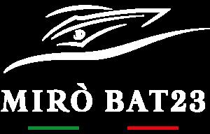 Miro-bat-23